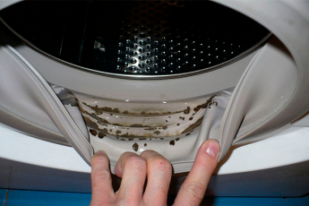 Чудо-метод, который поможет избавиться от плесени в стиральной машине!