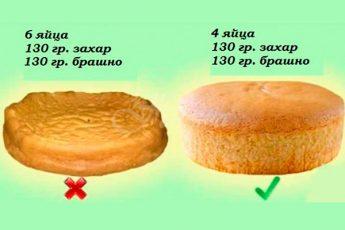 10 правил приготовления вкусного и мягкого бисквита