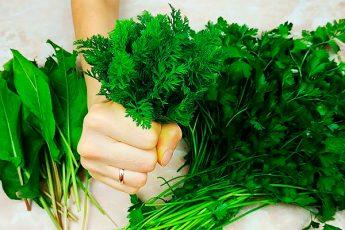 Зелень зимой не покупаю! 5 лучших способов хранения зелени круглый год