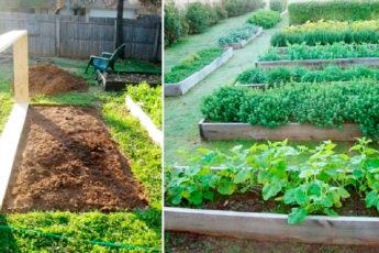 Создание теплой грядки: осенние заботы о будущем урожае