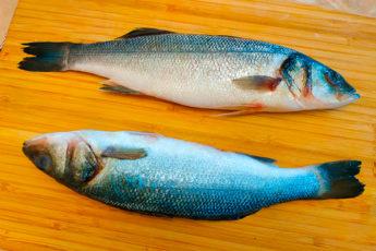 Чистим любую рыбу от чешуи за 1 минуту без ножа и специальных приспособлений для чистки рыбы