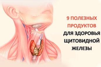 Девять продуктов полезных для щитовидной железы